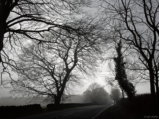 Wales_Feb_13_ 106