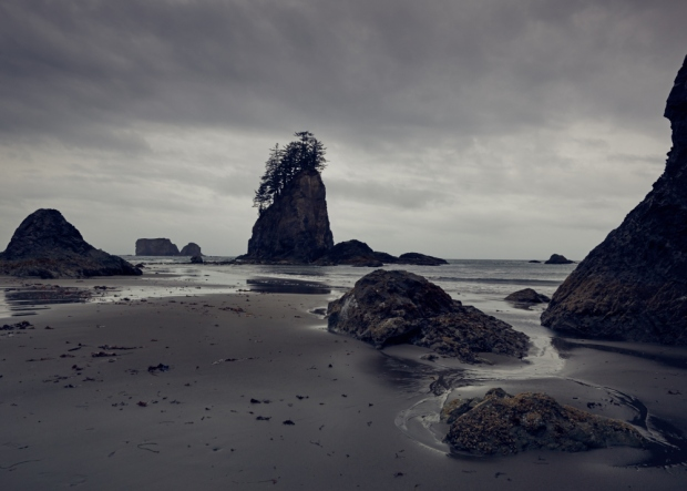 2nd Beach, Olympic National Park, WA